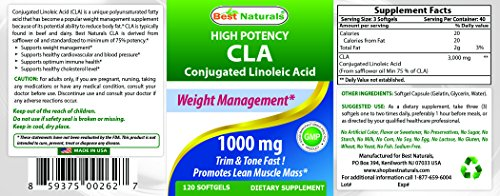 #1 CLA 1000 mg 240 Softgels by Best Naturals - Healthy Weight Management Supplement