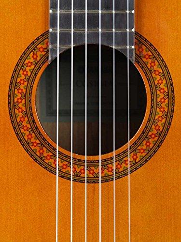 Yamaha C40 Classical Guitar Bundle with Gig Bag, Tuner, Strings, String Winder, Austin Bazaar Instructional DVD, and…