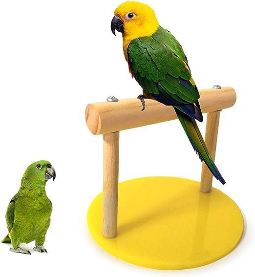 Catkoo - Jaula para pájaros con Soporte para pájaros y Loros, para Jugar al Gimnasio, Parakeet, decoración de Jaula de periquitos, con comedero y Escalera para Colgar, Juguete para Masticar: Amazon.es: Productos