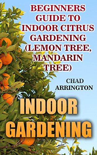 indoor-gardening-beginners-guide-to-indoor-citrus-gardening-lemon-tree-mandarin-tree