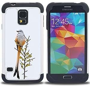 """SAMSUNG Galaxy S5 V / i9600 / SM-G900 - 3 en 1 impreso colorido de Altas Prestaciones PC Funda chaqueta Negro cubierta gel silicona suave (Plumas de la cola del pájaro gris invierno Ornitología"""")"""