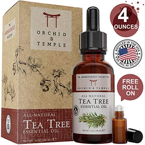 Therapeutic Essential Orchid Temple Alternifolia