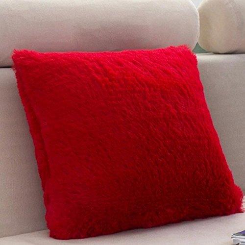 LISASTOR Fahion Decorative Home Plush Pillow Case Faux Fur P