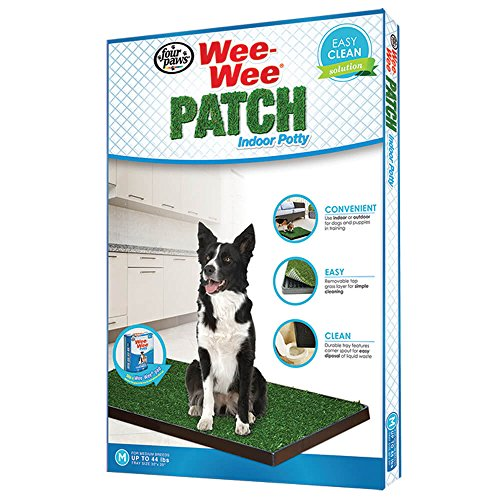 Four Paws Wee-Wee Patch Medium Indoor Potty Dog Housebreaking Tray, 20