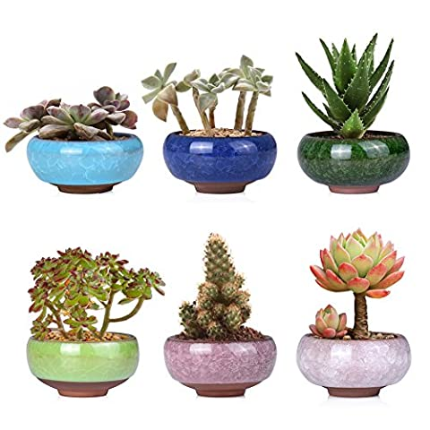 WITUSE Cute Ice-Crack Glazed Ceramic Box Succulent Plant Pot For Home Office 6Pcs Set