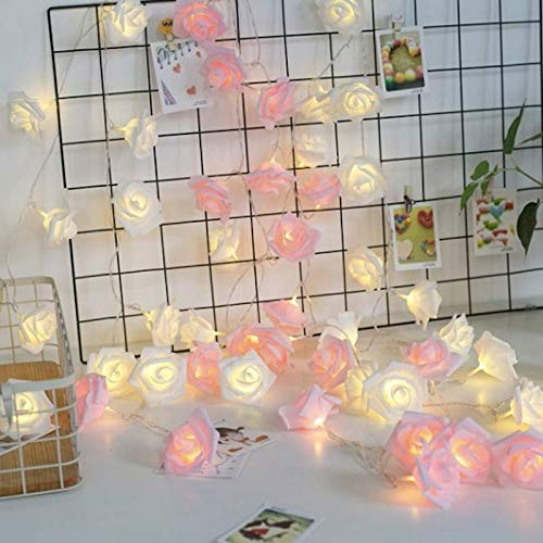 A2Z, Romantic Pink & WarmWhite Roses Led Fairy Decorative String Lights, Diwali Lights (5M Pink + 5M WarmWhite)