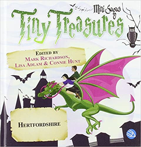 Tiny treasures book cover