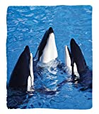 Chaoran 1 Fleece Blanket on Amazon Super Silky Soft All Season Super Plush Sea Animals Decor Collection Three Orca Killer Whales Aquariumwim Pacific Marineea World Ocean Picture Fabric et
