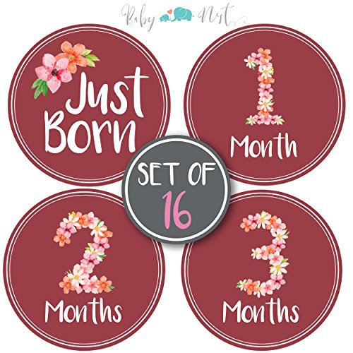 Cards Scrapbooking Baby Shower - Baby Monthly Milestone Stickers - Set of 16 Uniquely Designed Flower Bouquet for Girls First Year - Great for Baby Shower Registry and Photo Memories Keepsake