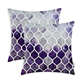 Purple Throw Pillows Pack of 2 CaliTime Cozy Throw Pillow Cases Covers for Couch Bed Sofa, Manual Hand Painted Colorful Geometric Trellis Chain Print, 20 X 20 Inches, Main Grey Purple Eggplant