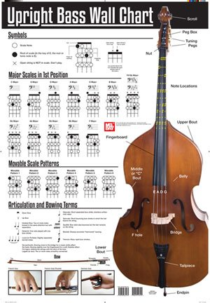 upright bass lesson - 3