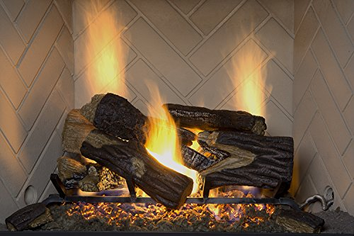 Burner Ember Standard (Sure Heat BRO18NG Sure Heat Burnt River Oak Vented Gas Log Set, 18-Inch, Natural Gas)