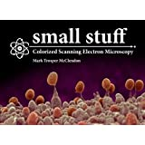 small stuff: Colorized Scanning Electron Microscopy