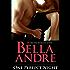 One Perfect Night (Contemporary Romance) (The Sullivans)