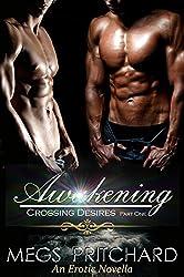 Awakening: Part One in the Crossing Desires Series