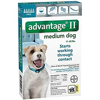 Advantage Ii For Small Dogs Amazon