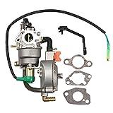 lpg carburetor - HIPA Dual fuel carburetor LPG NG conversion for HONDA GX240 Generator