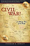 Civil War!: A Missing Piece of the Puzzle Northeast Arkansas 1861-1874
