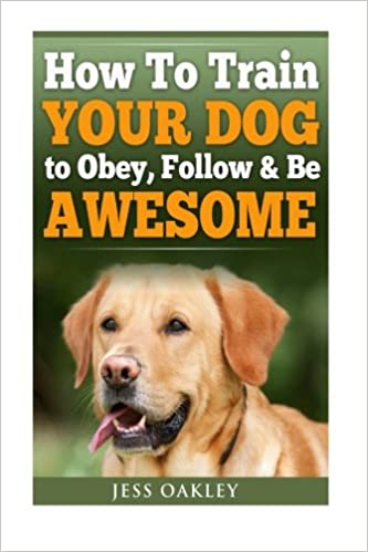 How To Train Your Dog To Obey, Follow and Be Awesome