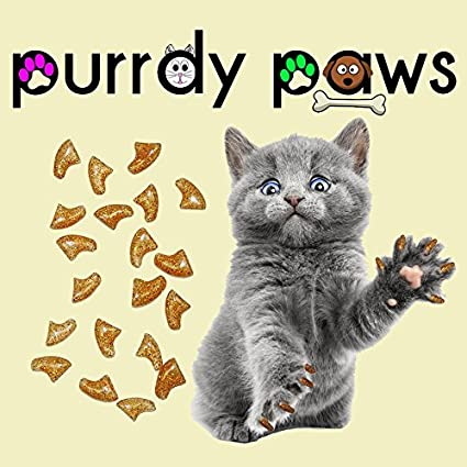 e8dec9f0a4f1db Purrdy Paws 40-Pack Soft Nail Caps For Cat Claws GOLD HOLOGRAPHIC GLITTER  SMALL