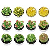 Cactus Tealight Candles,Artificial Succulents Decorative Tea Light Candles 12 Pcs,Perfect for Birthday Wedding Party Home Décor