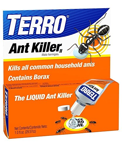 Cheapest Ant killer