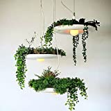 LED Hanging Garden Plant Potted Lamp Creative Chandelier Light
