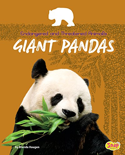 Giant Pandas (Endangered and Threatened Animals)