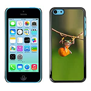 LASTONE PHONE CASE / Carcasa Funda Prima Delgada SLIM Casa Carcasa Funda Case Bandera Cover Armor Shell para Apple Iphone 5C / Cool Animal Cute Green Forest Fitness