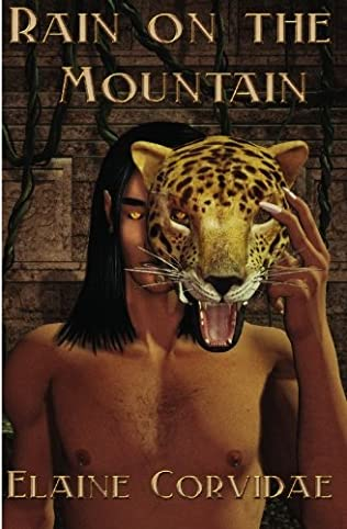 book cover of Rain on the Mountain