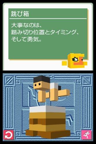 Rittai Picross [Japan Import]