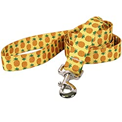 "Yellow Dog Design Pineapples Yellow Dog Leash, Large/1"" Wide and 5' (60"") Long"
