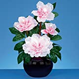 40cm Fibre Optic Pink Potted Peony Plant by Christmeas Decorations