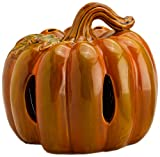 Scenterrific W510036 Pumpkin Decorative Ceramic Fragrance Warmer