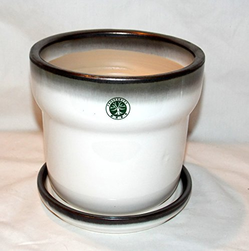 "New 6"" White with Charcoal Trim Prosperity Ceramic Planter Plant Pot & Saucer"