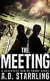 The Meeting: A Seventeen Series Short Story #3 (A Seventeen Series Thriller)