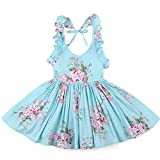 Flofallzique Girls' Cotton Vintage Print Floral Princess Dress For Toddler and Baby Girl (1, blue)