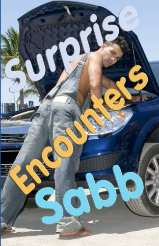 Surprise Encounters: A Gay Erotica Anthology