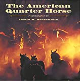 The American Quarter Horse, Becky Prunty, 1931153620