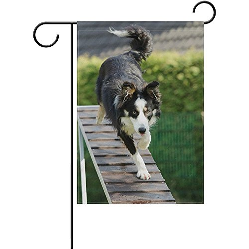 Startoronto Puppy Dog Web Collie Training Garden Flag Banner
