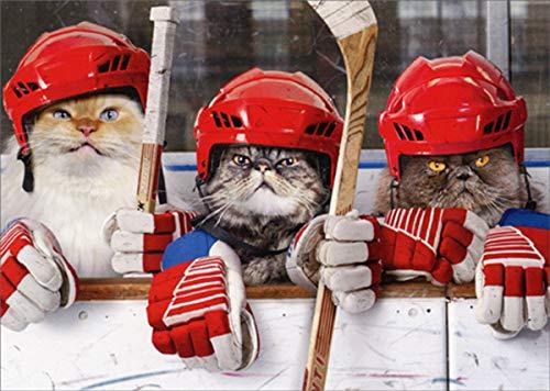 (Hockey Cats - Avanti Funny/Humorous Birthday Card)