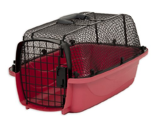 Petmate Look N See Kennel for Pets Up to 10-Pound, Pearl Honey Rose, My Pet Supplies