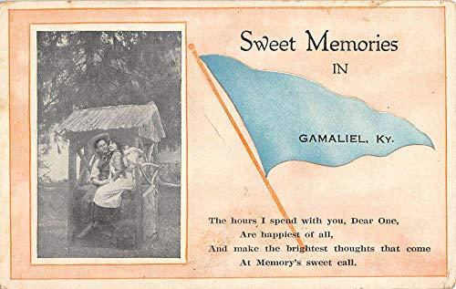 Gamaliel Kentucky Couple Romance Pennant Flag Antique Postcard K106041