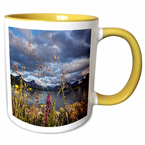 - 3dRose Danita Delimont - Alberta - Wildflowers, Jasper National Park, Alberta, Canada - CN01 AWO0009 - Art Wolfe - 15oz Two-Tone Yellow Mug (mug_134994_13)