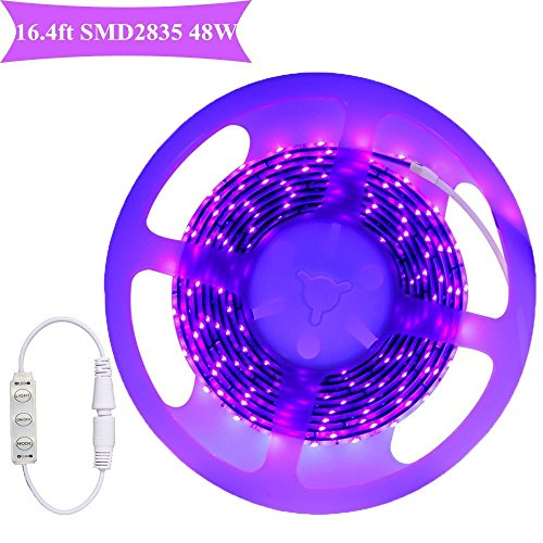 Ultraviolet Led Rope Light in US - 5