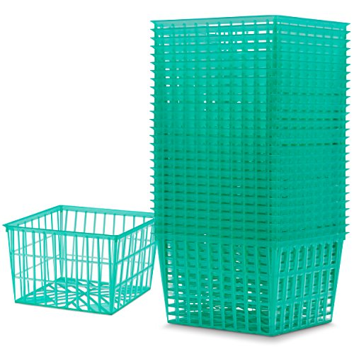 Bulk Berry Baskets, One Pint / 4 Inch Plastic Berry Box, For Fruit Picking, storage organization, and Art & Crafts (80)