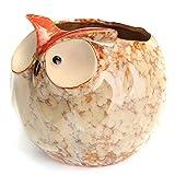 Ochoos Gardening Garden Decoration Flower Pot Owl Ceramic Crafts 5 Inch Planter Succulents Mini Flower Planting - Garden Pots & Planters