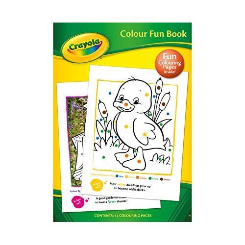 30%OFF Crayola A4 Color Divertido Libro De Actividades ...