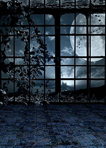 GladsBuy Spooky Window 5' x 7' Computer Printed Photography Backdrop Halloween Theme Background -