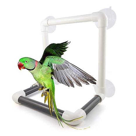 Fattigger Jaula de Ducha con Ventosa para Loros de pájaro, Barra ...